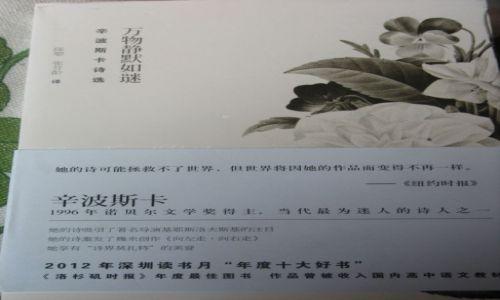 Zdjecie CHINY / Mongolia Wewnętrzna / Bajan Chot / Co czytają Chińczycy 4
