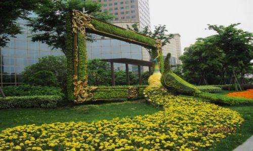 Zdjęcie CHINY / Szanghaj / Szanghaj / Zieleń miasta