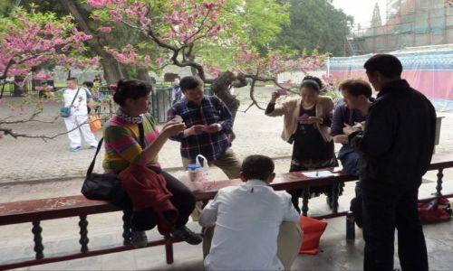 Zdjęcie CHINY / Beijing / Beijing / Życie towarzyskie kwitnie w parku
