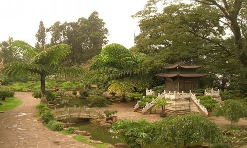Zdjęcie CHINY / Yunan / Kunming / Złota Świątynia 5