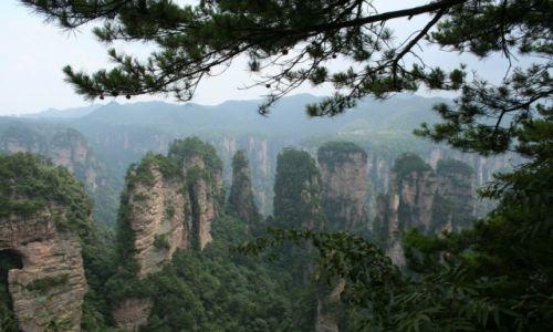 Zdjecie CHINY / prowincja Hunan / Park Narodowy Zhangjiajie / Zhangjiajie
