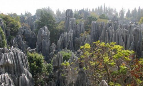 Zdjęcie CHINY / Yunan / Kamienny Las / Z  wędrówek po górach: Kamienny Las