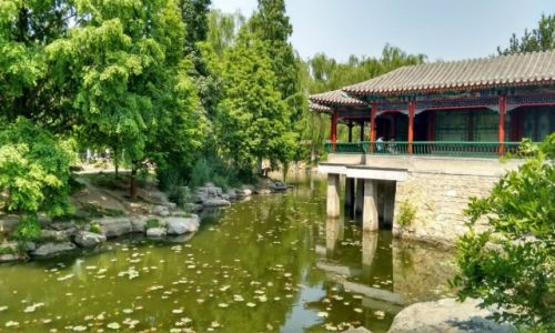Zdjecie CHINY / Pekin / Pekin / Pekin-park