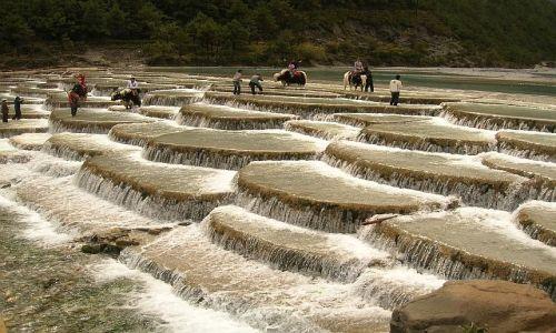 Zdjęcie CHINY / Yunan / okolice Lijiangu / park Yulond Xueshan 1