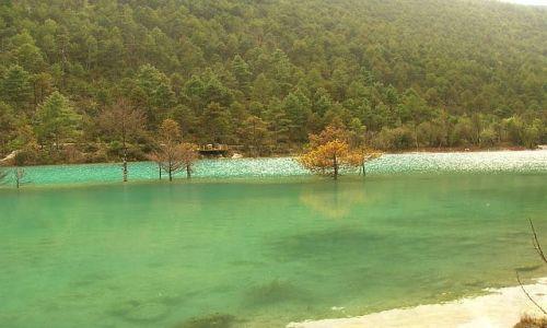 Zdjecie CHINY / Yunan / okolice Lijiangu / park Yulong Xueshan 3