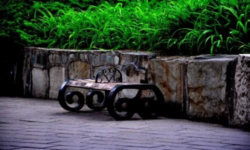 Zdjecie CHINY / Beijing / Ritan Park / �aweczka