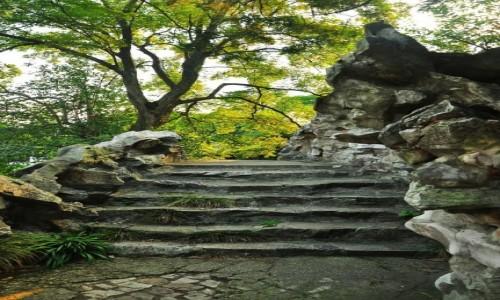 Zdjęcie CHINY / prowincja jangsu / ogrody Wuxi / Schody