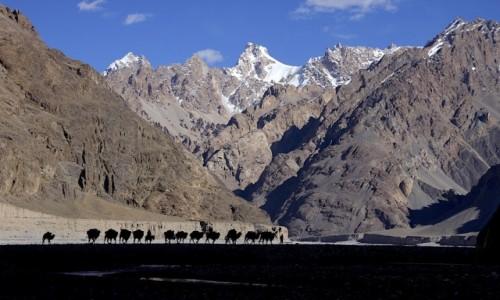 CHINY / Shakskam Karakoram / Dolina Shakskam / W drodze do K2
