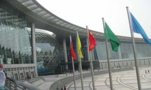 Zdjecie CHINY / - / Szanghaj /  Natural History Museum