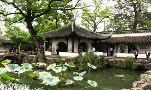 Zdjęcie CHINY / prowincja Jiangsu / Suzhou / Ogród Pokornego Zarządcy
