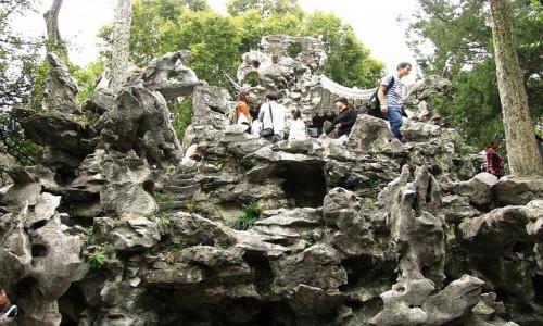 Zdjecie CHINY / prowincja Jiangsu / Suzhou / Ogród Lwi Zagajnik