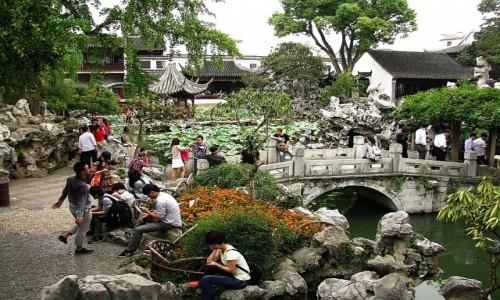 Zdjęcie CHINY / prowincja Jiangsu / Suzhou / Ogród Lwi Zagajnik