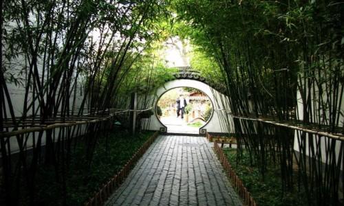 Zdjecie CHINY / prowincja Jiangsu / Nankin / pałac prezydencki - ogrody