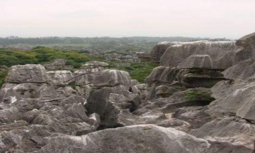 Zdjecie CHINY / brak / Kunming i okolice / Kamienny Las (orientacja pionowa:)