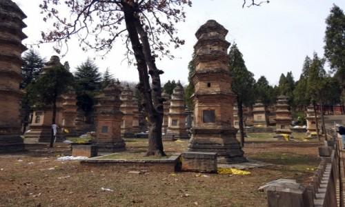 CHINY / Luoyang / Dengfeng / Las pagód