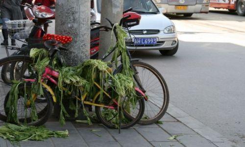Zdjęcie CHINY / brak / Pekin / hm...:)