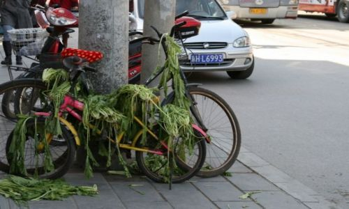 CHINY / brak / Pekin / hm...:)