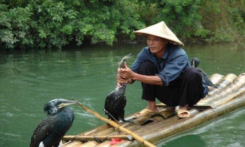 Zdjęcie CHINY / Guangxi / Yangshou / Połów