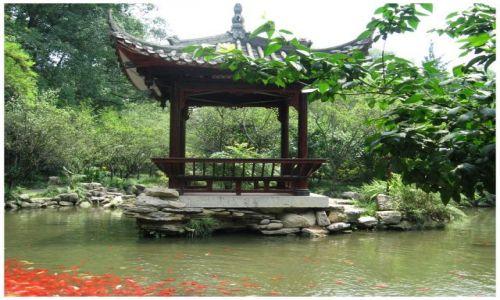 Zdjęcie CHINY / Prow.Sichuan / Leshan / Czerwone rybki