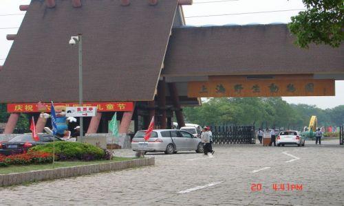 Zdjecie CHINY / brak / Szanghaj ZOO / Szanghaj  zoo -wejscie -,1 h od Szanghaju ,trudno znalezc ,nawet dla chinki