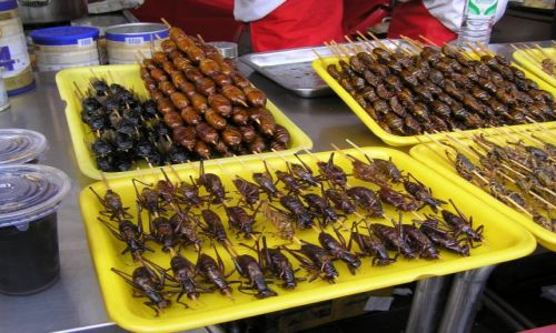 CHINY / Beijing / nocny market / smakołyki