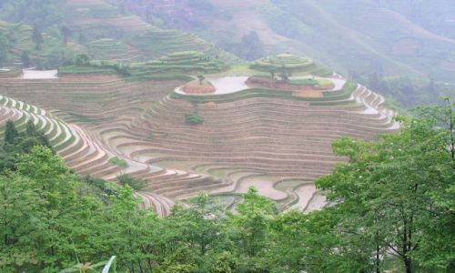 CHINY / południe Chin / na północ od Yangshuo / terasy ryżowe