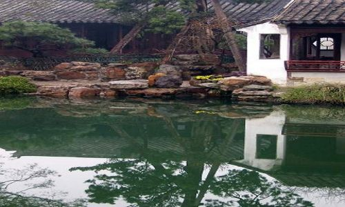 Zdjecie CHINY / Jiangsu / Suzhou / Ogr�d mistrza s