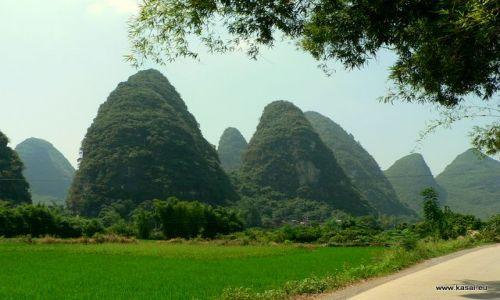 Zdjecie CHINY / brak / Yangshuo / Chiny pola ryżowe w okolicyYangshuo