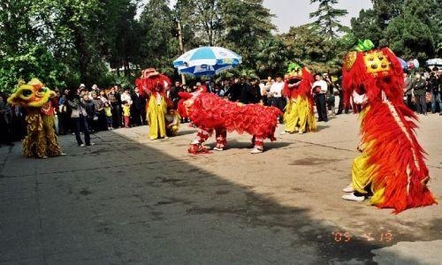 Zdjęcie CHINY / Henan / Luoyang / Świeto Piwonii