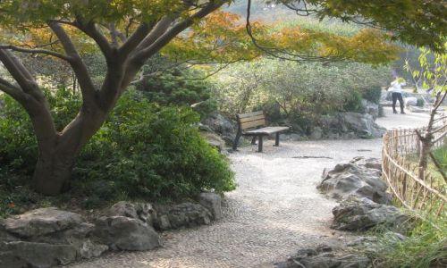 Zdjecie CHINY / Hangzhou / miejski park / alejka