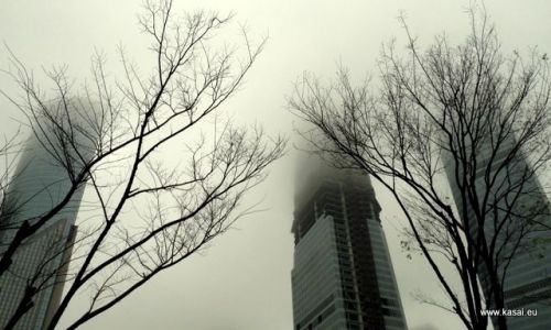 CHINY / - / Szanghaj / Szanghaj - drapacze chmur
