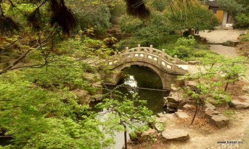 CHINY / - / Suzhou / Suzhou - ogród przy przy pagodzie