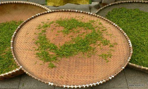 CHINY / - / Hangzhou / Hangzhou - herbata