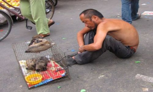 Zdjęcie CHINY / NE Chiny / Pekin / w hutongach handluje sie wszystkim