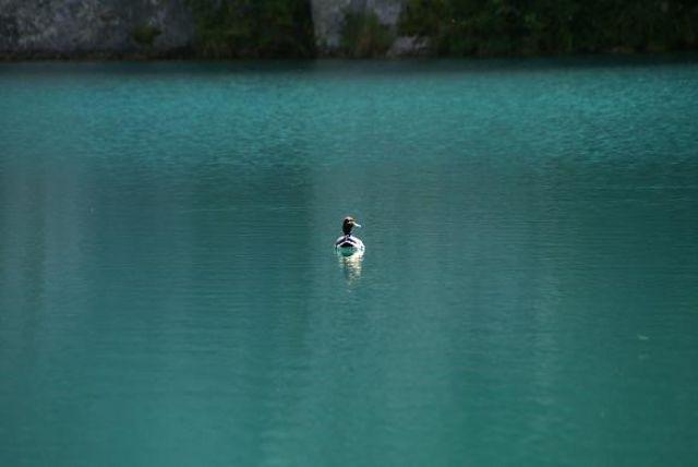 Zdjęcia: Jeziora Plitwickie, Plitwice, CHORWACJA