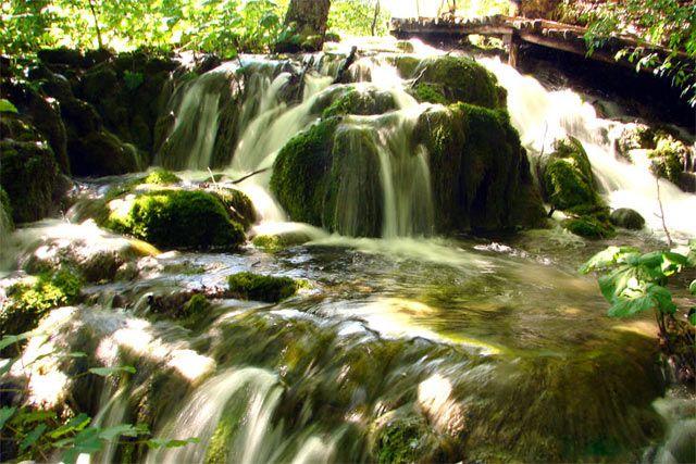 Zdjęcia: Park Narodowy Krka , środkowa Dalmacja, ..., CHORWACJA