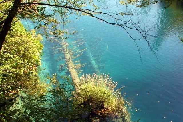 Zdjęcia:  Pletvickie Jeziora, środkowa dalmacja, .., CHORWACJA