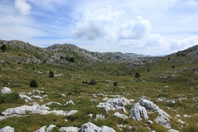 Zdjęcia: Park Przyrodniczy Biokovo, Makarska, Łączka, CHORWACJA