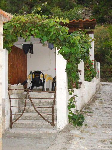 Zdjęcia: Wyspa Mljet, Dalmacja, Taras, CHORWACJA