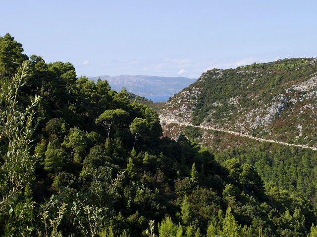Zdjęcia: Wyspa Mljet, Dalmacja, Droga, CHORWACJA