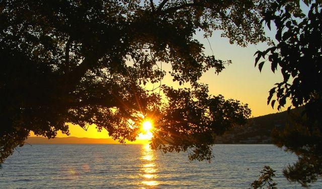 Zdjęcia: Zivogosce, Dalmacja, zachód, CHORWACJA