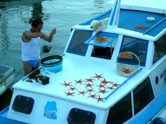Zdjęcia: Zadar, Dalmacja, w porcie..., CHORWACJA