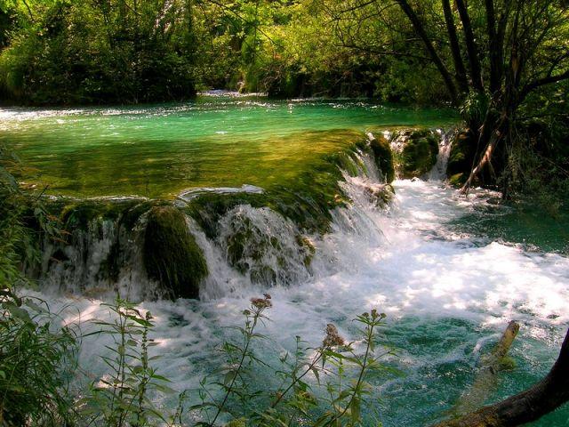 Zdj�cia: Plitvice, Chorwacja �rodkowa, troch� przyrody, CHORWACJA