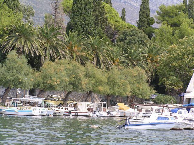 Zdjęcia: Między Trogirem a Splitem, Dalmacja, Marina pod palmami, CHORWACJA
