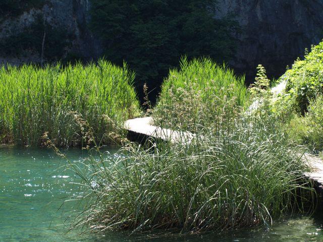 Zdjęcia: plitvice, plitvickie jeziora, zawiłe szlaki..., CHORWACJA