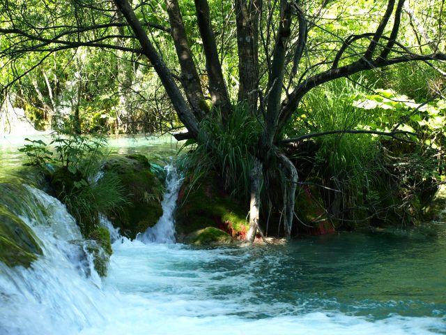 Zdjęcia: plitvice, plitvickie jeziora, aż chce się wejść, CHORWACJA