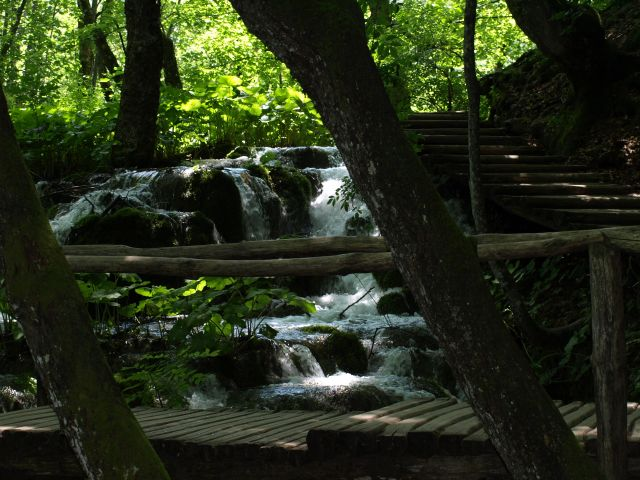 Zdjęcia: park, plitvice, trochę  cienia, CHORWACJA