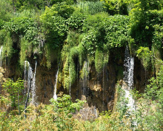 Zdjęcia: park, Plitvice, spada nawet po trawie, CHORWACJA