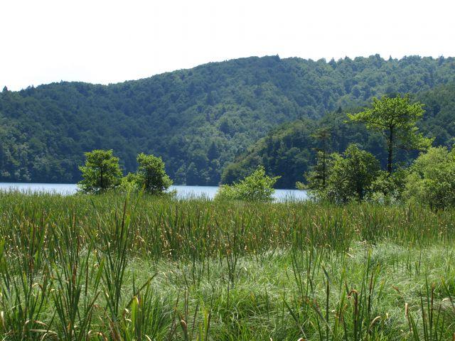 Zdjęcia: park, Plitvice, czasem trochę przestrzeni, CHORWACJA