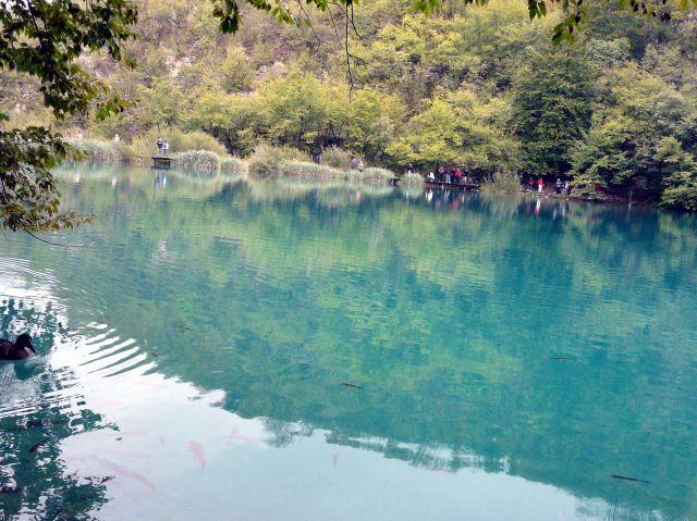 Zdjęcia: Plitwickie jeziora, Bałkany, Jezioro, CHORWACJA
